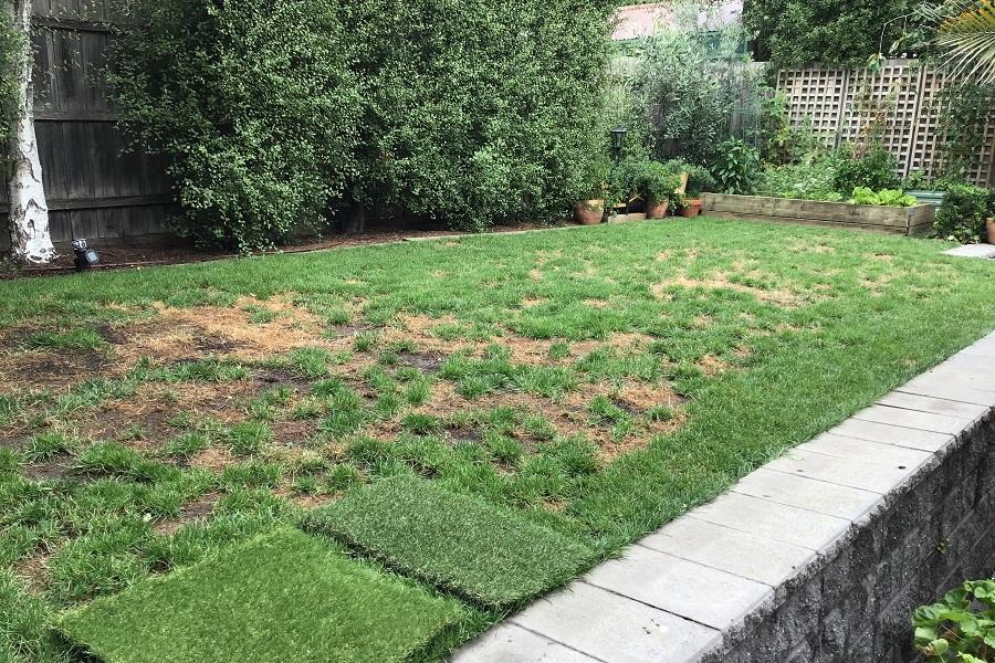 backyard-artificial-grass-green-before