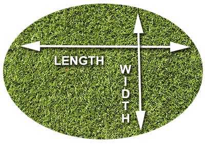 how-to-measure-oval-grass