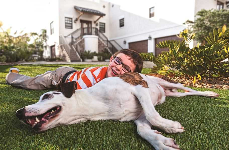 pets-residential-synthetic-fake-grass-lawn-turf-installers-installations-best